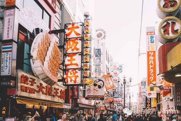 日本五松针手绘