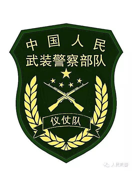 武警部队更换新式标志服饰 新式臂章有五点不同图片