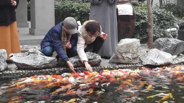 春节期间,李波夫妇在内地游玩。