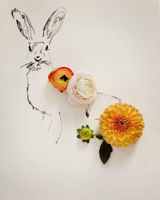 花朵在这里弥漫着细腻又浪漫的魅力、而铅笔画也仿佛有了鲜活的生