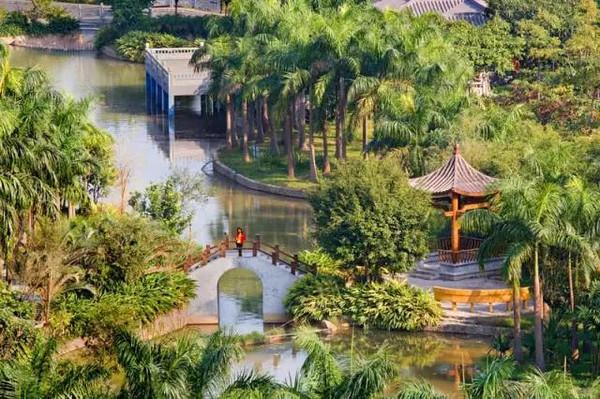 踏春走起!广州这么多免费公园,离你最近的是哪个图片