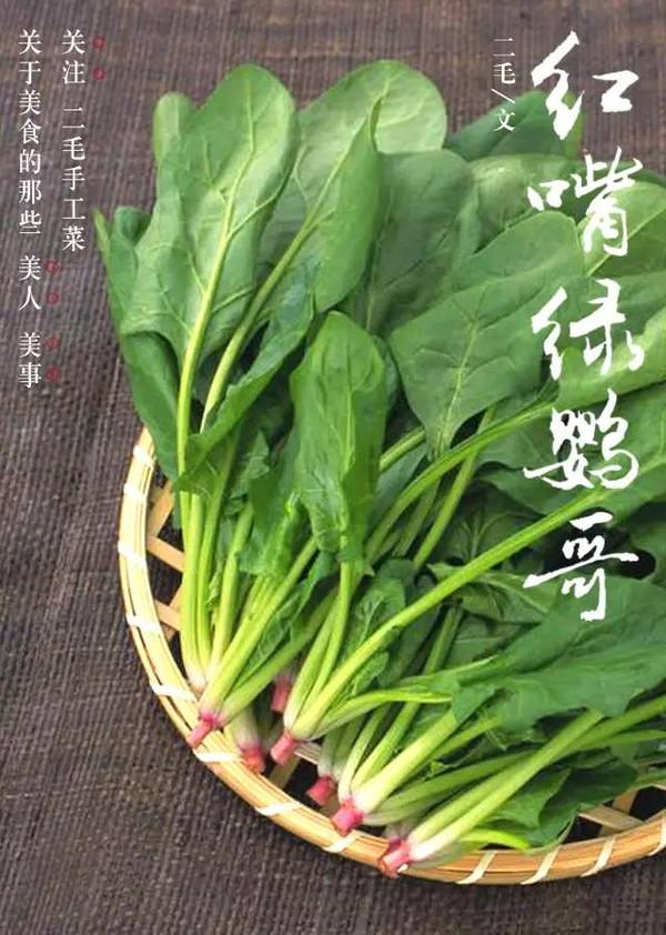 【组图】菠菜: 红嘴绿鹦哥,菠菜绿翡翠挂件,正月菠菜才吐绿,菠菜和豆腐一起拉肚子 - IT中国