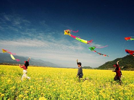 成都十大最适合放风筝的地方图片