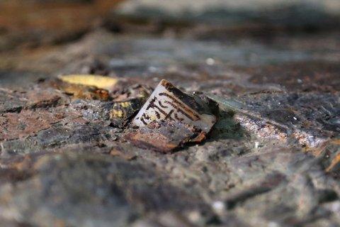 专家称三重证据可证明海昏侯墓主为汉武帝之孙刘贺