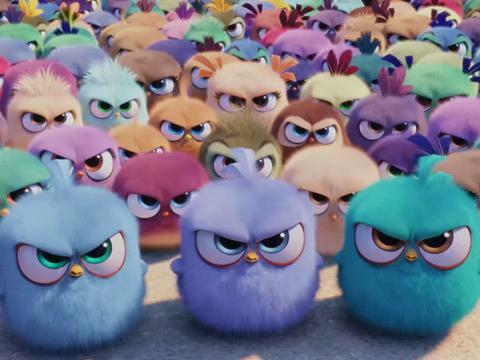 1080p南小鸟_电影《愤怒的小鸟》国际版预告1080p视频