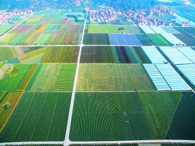 初春,空中鸟瞰东园镇的万亩现代蔬菜种植基地,色彩斑斓。