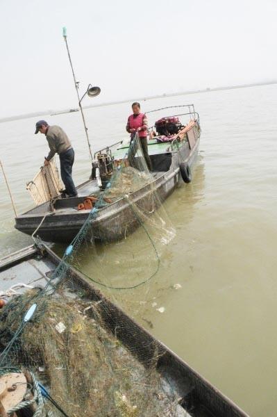 渔民在长江上捕捞刀鱼。资料图