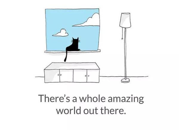 14个猫咪教给你的人生哲理