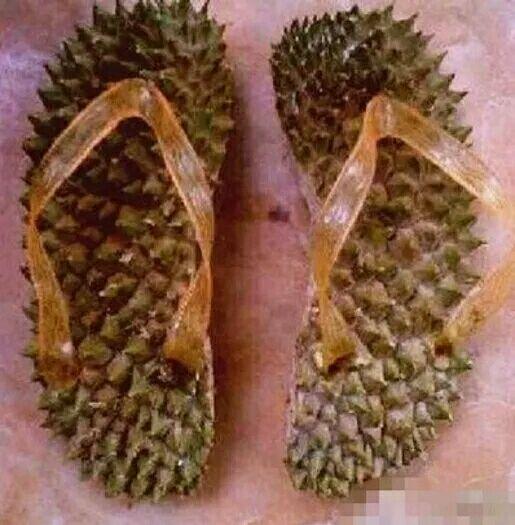 3月8日妇女节独家礼物泰国图片皮拖鞋白笑笑表情榴莲包青图片