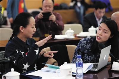 4日,北京会议中心,全国政协文艺界别小组会,聋哑委员邰丽华通过手语翻译在会上发言。新京报记者 薛�B 摄
