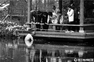 美化工人葛徒弟下水打捞手机 图像来历:浙江在线社区