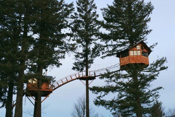 那些长在树上的房子 每个人梦想中的树屋图片