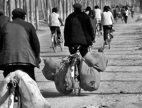 老照片 80年代农村的主要运输工具