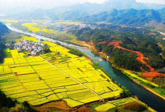 中国农村经济_中国农村经济