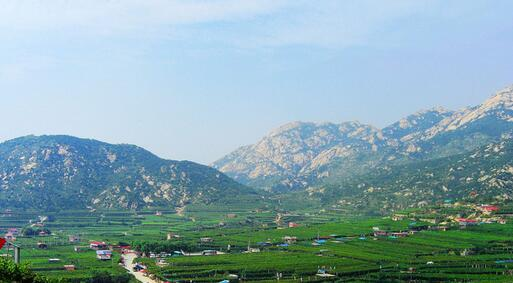 松顶子山等区域将调入大泽山省级自然保护区 已获批(图)