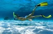 潜水达人讲述潜水那些事儿