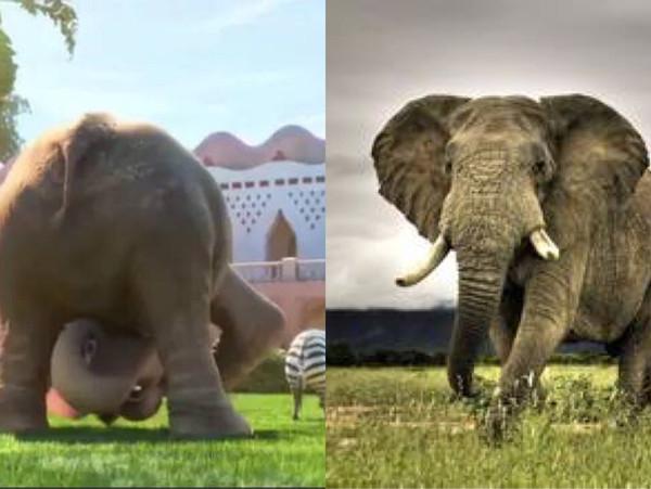 据悉迪斯尼在《疯狂动物园》中一共设置了64种动物