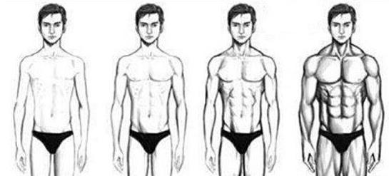 增肌原理是什么_咬肌脸是什么样子的图