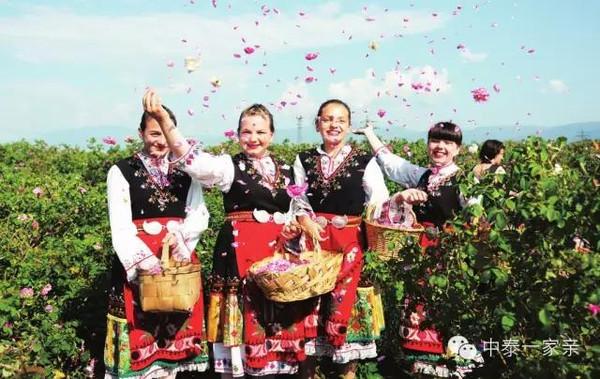 成功签约保加利亚玫瑰庄园开启追梦之
