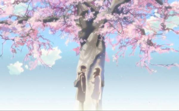 这部动画里的场景每一帧都美得可以当桌面!一棵开满樱花的树,漫天图片