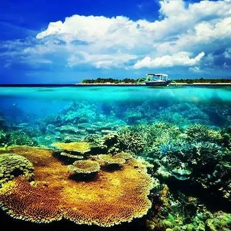 长在深闺人未知?巴厘岛的邻居——龙目岛