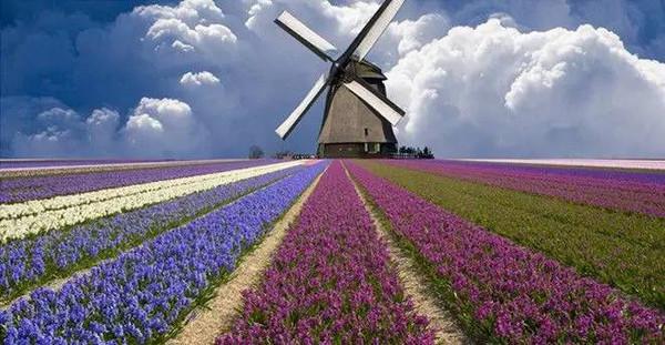 庄园整体建筑风格是欧式风格,有象征欧式建筑风格的田园风车,浪漫庄严