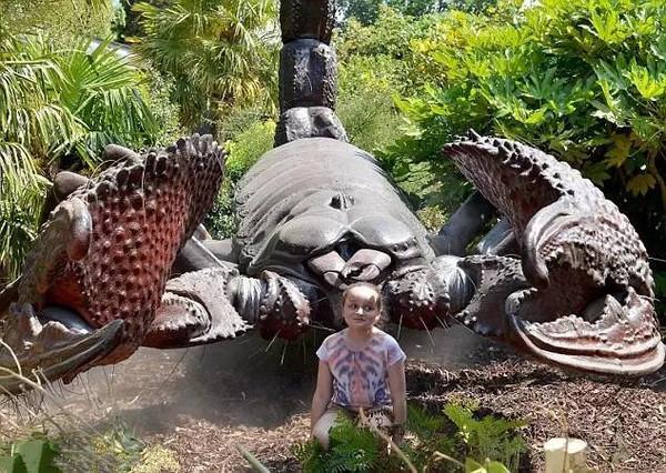 蝴蝶谷金发美女16p_亚马逊巨型昆虫之蝴蝶谷\