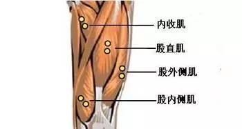 跑步运动,警惕大腿肌肉拉伤