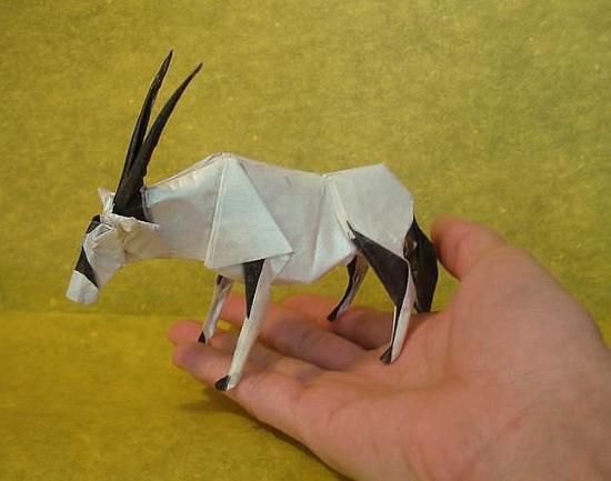 和许多人一样,日本艺术家shuki kato的第一次折纸也是最简单的纸飞机图片