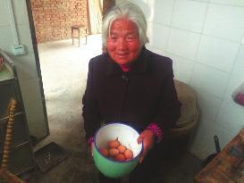 """华商报咸阳讯(记者 马新斌)泾阳县泾干大街办双赵村的80岁乡民冯秋娥,近一年来没买过一个鸡蛋,但天天都有鸡蛋吃。本来,她每个月都能定时从村委会领到30个鸡蛋。和冯秋娥同样享用这项""""福利""""的,另有村里其余53位年过75岁的白叟,但他们很少有人晓得,这些鸡蛋是一个叫杨飞的80后小伙送给他们的。"""