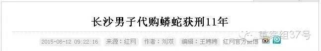 为什么养了这种大蛇,会招来牢狱之灾?重案组37号(微信ID:zhonganzu37)探员先带大家来认识下这是一种什么蛇: