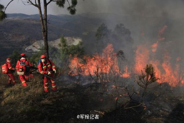 云南玉溪森林火灾烧到昆明境内 14集团军救援