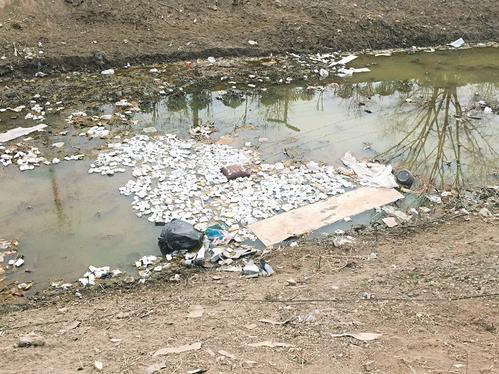 浑浊的河水里,泡沫,塑料袋,烂水果等垃圾遍布其中