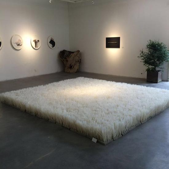 白草地,余加,混凝土、扎带,400×400cm,2014年
