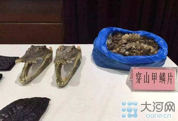 郑州海关罚没的动物制品
