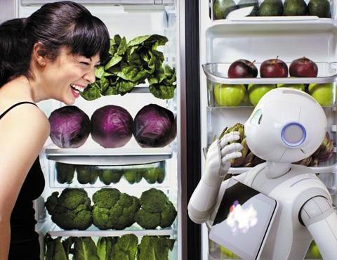 法国aldebaran公开发出的机器人