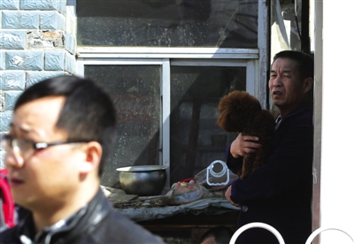 昨日,简易楼的老街坊抱着小狗围观拆除工作。
