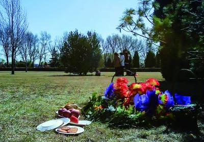 全市公墓生态安葬 比例突破45%(组图),独生子