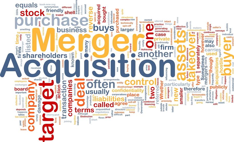 """""""每个并购的企业都应该有一个并购促进企业国际化成长的战略。通过并购促进国际化战略,需要什么,与原有产业是什么关系,这很重要。""""马蔚华说。"""