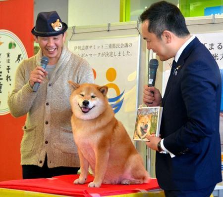 """据报道,期间,日本三重县知事铃木英敬接见了Maru,并对它说:""""终于把你盼来三重了,十分感谢""""。"""