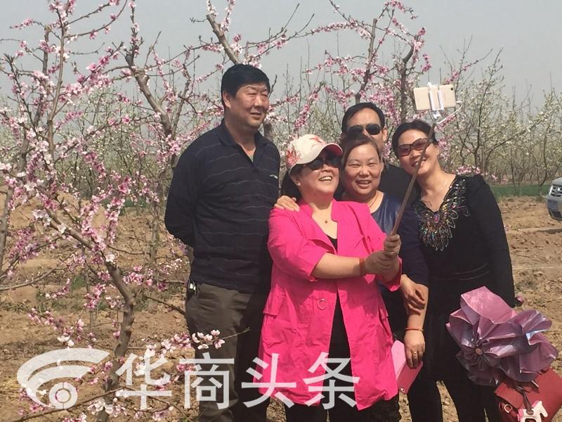 """""""梨花淡白柳深青,柳絮飞时花满城""""今日的蒲城是花的天下,20万亩梨花悉数开放,万余亩桃花也在笑脸迎人。"""