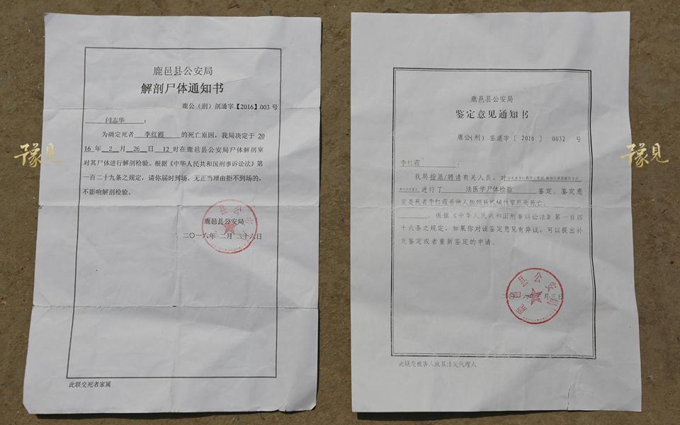 网曝孕妇遭遇家暴被丈夫掐死 警方:犯罪嫌疑人已被批捕