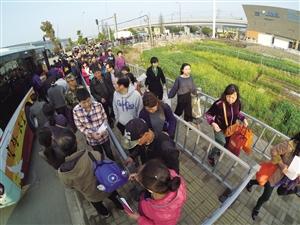 鄞州宝幢临时公交接驳站,市民排队上车前往墓区 记者 高远 摄