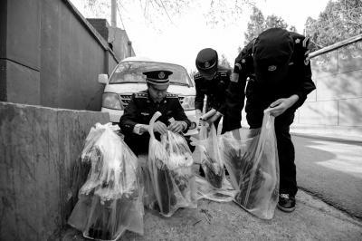 城管查扣在路边兜售鲜花的无照经营小贩。京华时报记者赵思衡摄