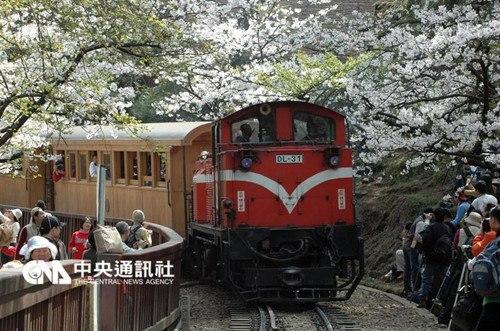"""台铁3日宣布,5月1日起,调高阿里山森林铁路票价。台湾""""中央社""""档案照片"""