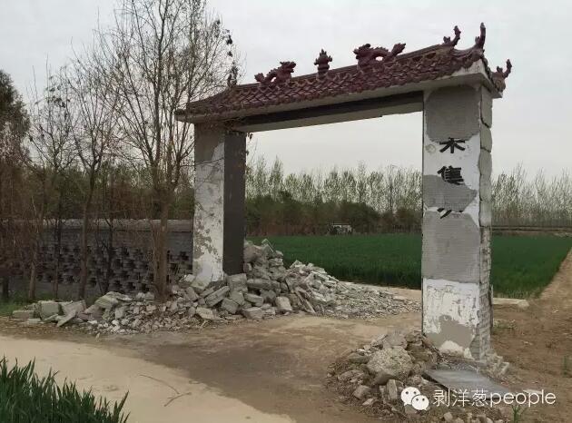 朱集村双龙湾义冢,南面和东面的墙曾经被撤除,种上了麦子。