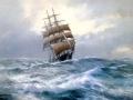 飞越澳洲 航海家庭