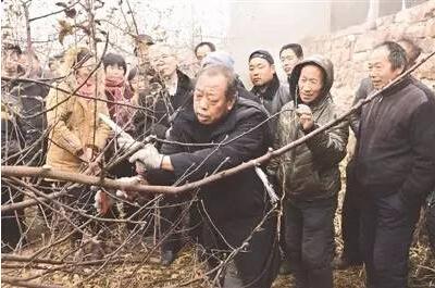 4月10日清晨4时,河北农业大学传授、博士生导师李保国心脏病突发,经急救有效可怜逝世,享年58岁。据悉,李保国传授尸体离别仪式将于4月12日上午10时在保定殡仪馆举办。