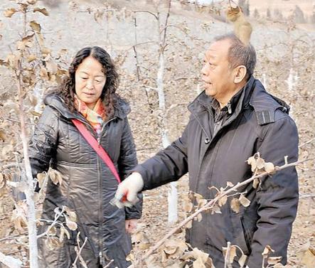 人和农夫孤芳自赏,心和农夫贴在一同。多年来,李保国用至心换回了真情。