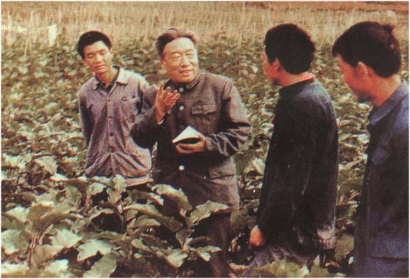 担任贵州省副省长时的徐采栋(左二)正在考察蔬菜试验基地情况。